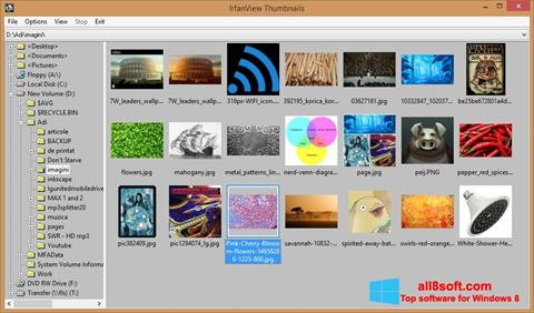 Posnetek zaslona IrfanView Windows 8