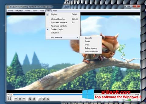 Posnetek zaslona VLC Media Player Windows 8